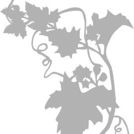 Šabloon, A5, viinamarjad