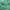 Mica pigmentpulber, Fruit Green, mündiroheline