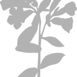 Šabloon, A5, lill, nurmenukk