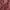 Mica pigmentpulber, Purplish Red, tumepunane