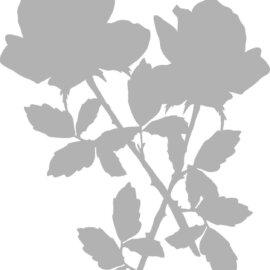Šabloon, A5, roos