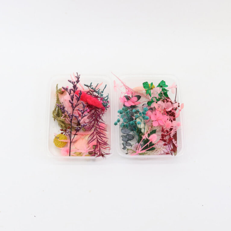 Kuivatatud lilled ja taimed, MIX komplekt