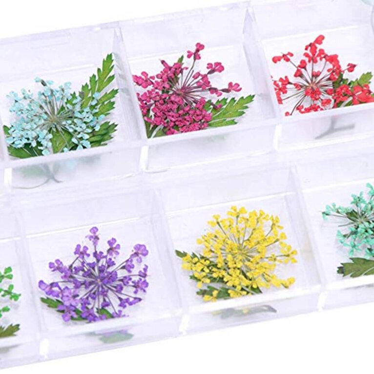 Kuivatatud lillede komplektid, erinevad