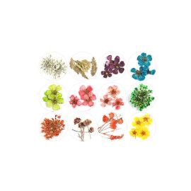 Kuivatatud lillede komplektid, erinevad – Pisikesed õied ja lehed