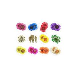 Kuivatatud lillede komplektid, erinevad – Värvilised õied ja lehed