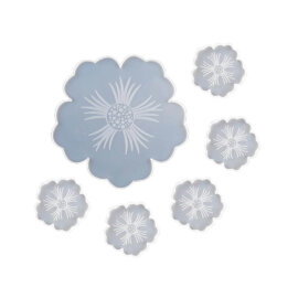 Silikoonvormide komplekt epoksiidvaigu valamiseks. Üks kandik + viis klaasialust.