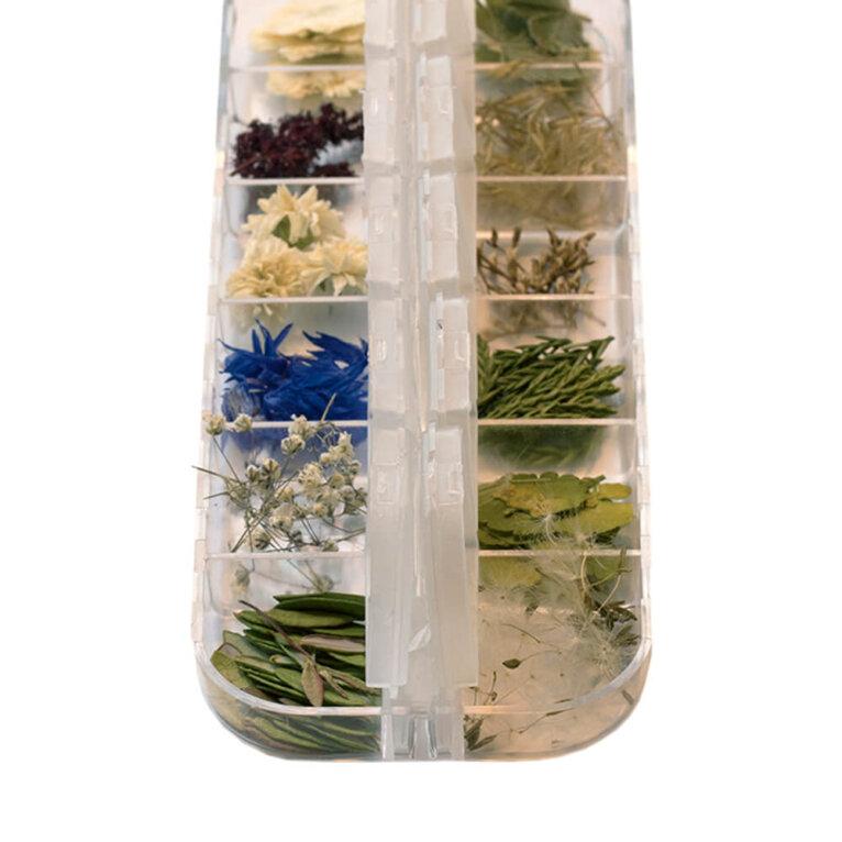 Kuivatatud lillede komplekt, Eesti lilled ja taimed