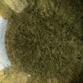 Mica pulber, roheline, Patina